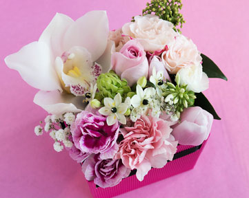 Caussade fleurs